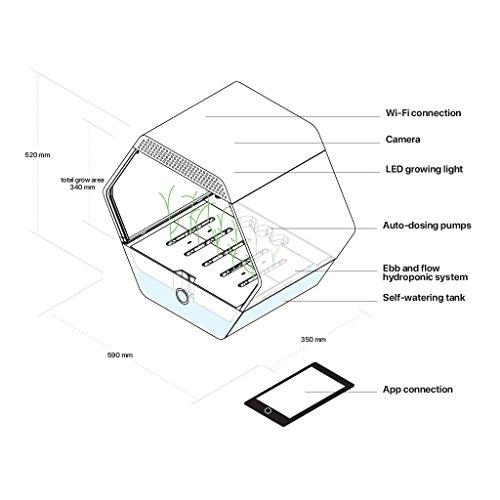 serra idroponica struttura