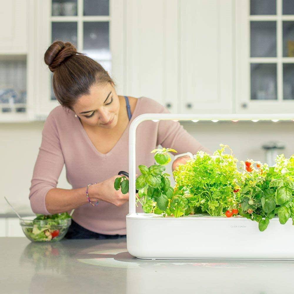 smart garden click & grow per coltivare in casa