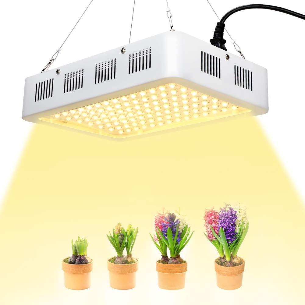 coltivare in casa con le lampade a LED