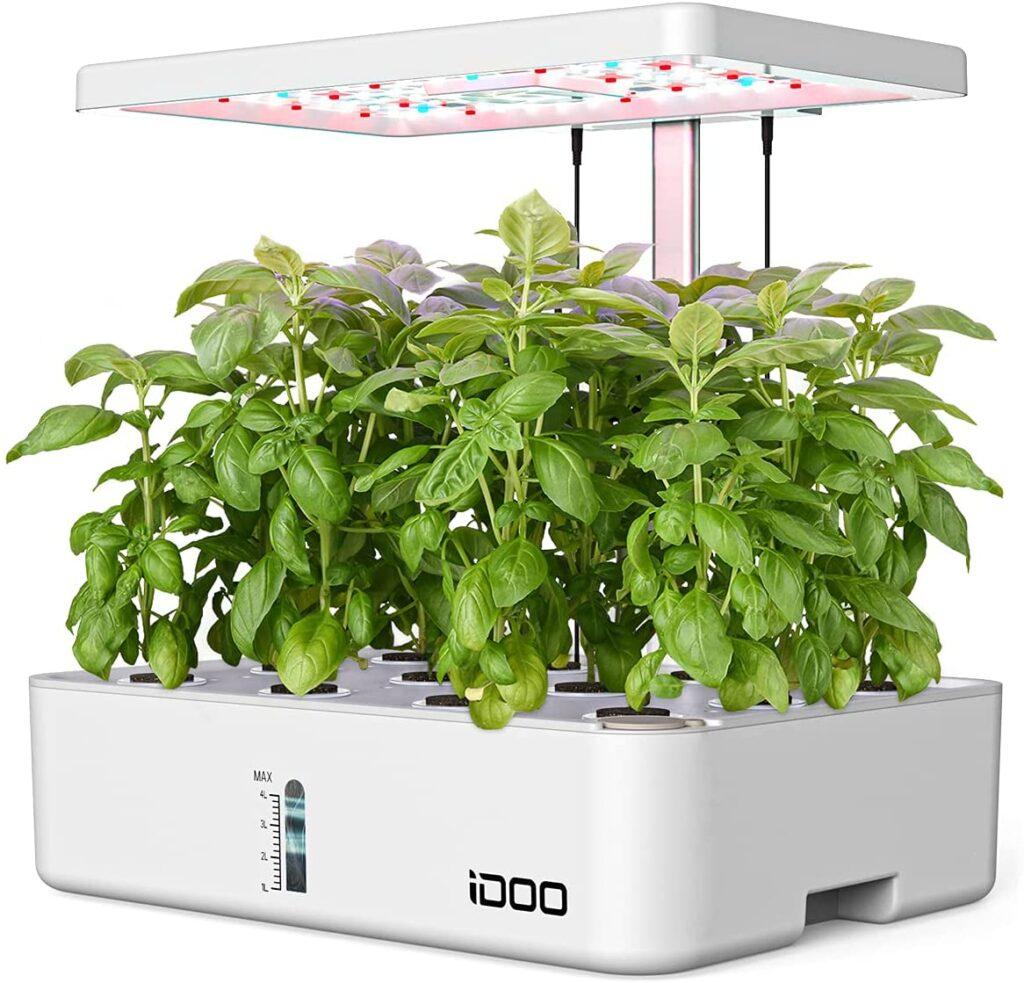 coltivare in casa con un sistema idroponico